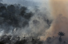 An aerial view of Amazon rainforest burning to clear land for cattle pasture near the city of Novo Progresso, Para state, September 23, 2013. Picture taken on September 23, 2013. REUTERS/Nacho Doce (BRAZIL)