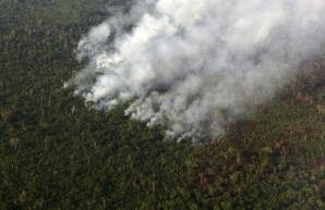 Smoke billows during a fire in an area of the Amazon rainforest at the Kuikuro territory in the Xingu National Park, Mato Grosso, Brazil, October 4, 2015. REUTERS/Paulo Whitaker